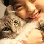 猫とシュリ